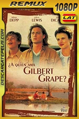 ¿A quién ama Gilbert Grape? (1993) 1080p BDRemux Latino