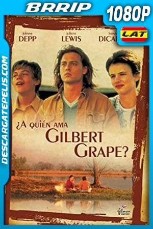 ¿A quién ama Gilbert Grape? (1993) 1080p BRrip Latino