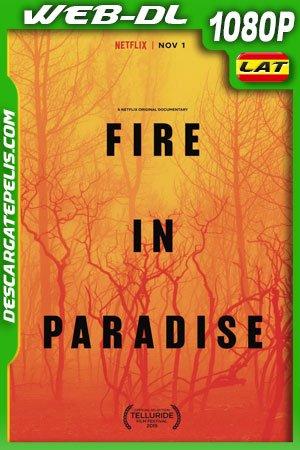 Paradise en llamas (2019) 1080p WEB-DL Latino – Castellano – Ingles
