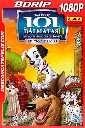 101 dálmatas II: Una aventura en Londres (2003) 1080p BDRip Latino