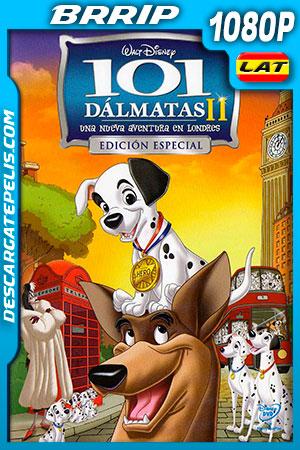 101 dálmatas II: Una aventura en Londres (2003) 1080p BRRip Latino