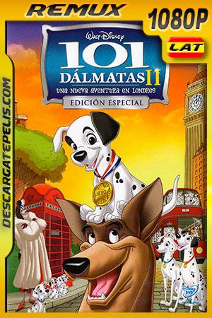 101 dálmatas II: Una aventura en Londres (2003) 1080p Remux Latino
