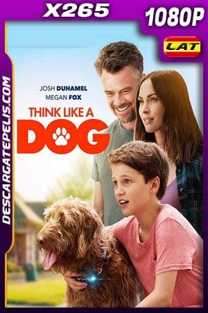 Think Like a Dog (2020) 1080p X265 BDrip Latino – Ingles