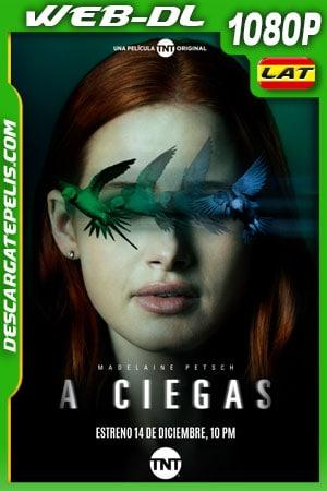 A ciegas (2020) 1080p WEB-DL Latino
