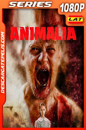 Animalia Temporada 1 (2020) 1080p WEB-DL Latino