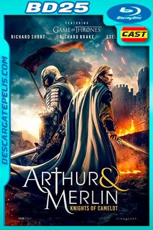 Arturo y Merlin: Caballeros de Camelot (2020) 1080p BD25 Castellano