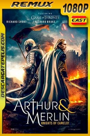 Arturo y Merlin: Caballeros de Camelot (2020) 1080p Remux Castellano