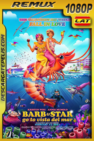 Barb and Star Go to Vista Del Mar (2021) 1080p Remux Latino
