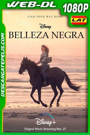Belleza Negra (2020) 1080p WEB-DL Latino