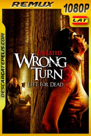 Camino hacia el terror 3: Abandonado para morir (2009) Unrated 1080p Remux Latino