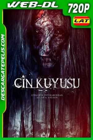 Cin Kuyusu (2015) 720p WEB-DL Latino
