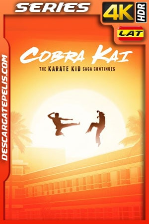 Cobra Kai (2018) Temporada 1 4k WEB-DL Latino