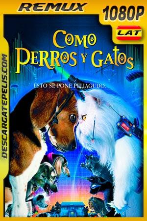 Como perros y gatos (2001) 1080p BDRemux Latino – Ingles
