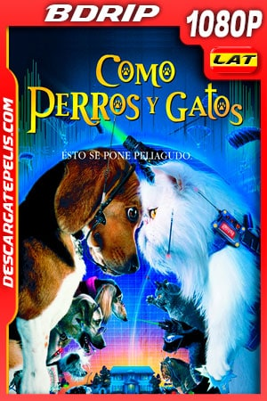 Como perros y gatos (2001) 1080p BDRip Latino – Ingles