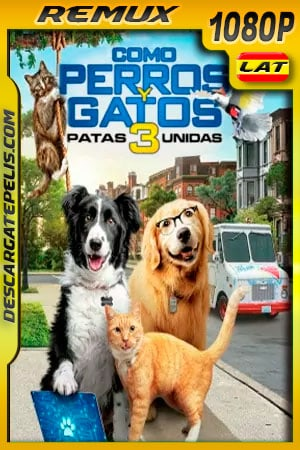 Como perros y gatos 3 Patas Unidas (2020) 1080p BDRemux Latino