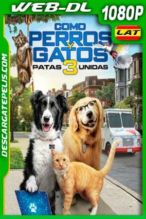 Como perros y gatos 3 Patas Unidas (2020) 1080p WEB-DL Latino – Ingles