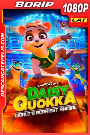 Daisy Quokka: ciudad santuario (2020) 1080p BDRip Latino