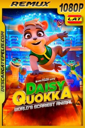 Daisy Quokka: ciudad santuario (2020) 1080p Remux Latino