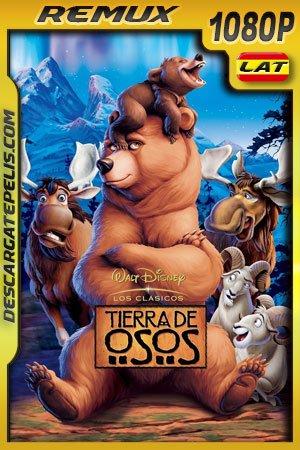 Tierra de osos (2003) 1080p BDRemux Latino – Ingles