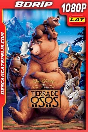 Tierra de osos (2003) 1080p BDrip Latino – Ingles