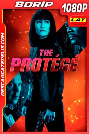 El Protegido (2021) 1080p BDrip Latino