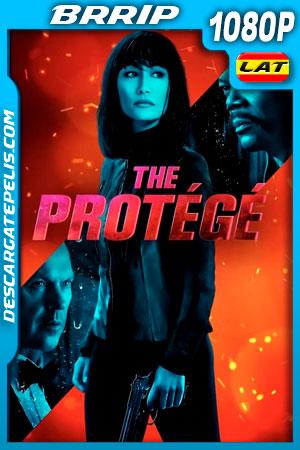 El Protegido (2021) 1080p BRrip Latino