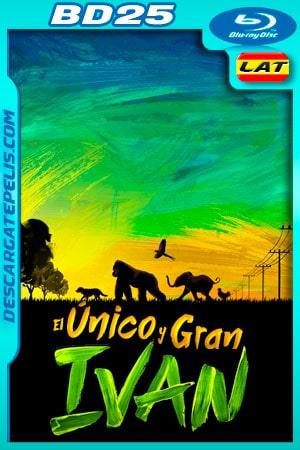 El único y gran Iván (2020) 1080p BD25 (Custom) Latino