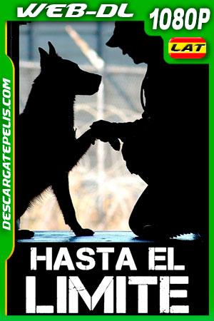 Hasta El Limite (2019) 1080p WEB-DL Latino
