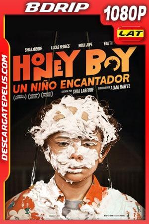 Honey Boy: Un niño encantador (2019) 1080p BDrip Latino