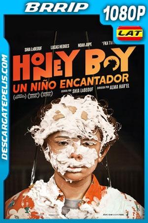 Honey Boy: Un niño encantador (2019) 1080p BRrip Latino