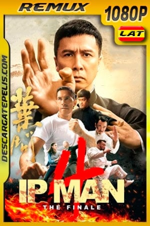 Ip Man 4: El final (2019) 1080p Remux Latino