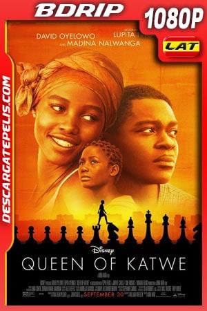La reina de Katwe (2016) 1080p BDrip Latino