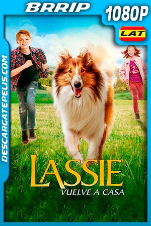 Lassie Vuelve a Casa (2020) 1080p BRRip Latino