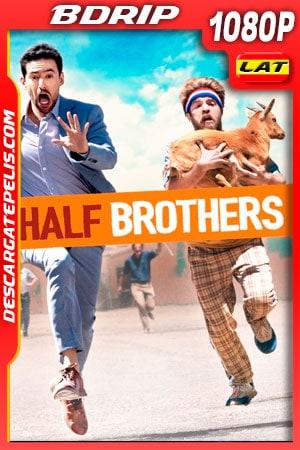 Medios Hermanos (2020) 1080p BDrip Latino