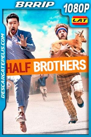 Medios Hermanos (2020) 1080p BRrip Latino