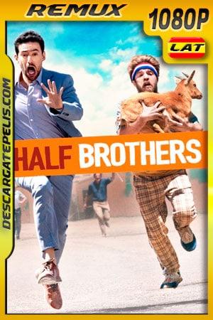 Medios Hermanos (2020) 1080p Remux Latino