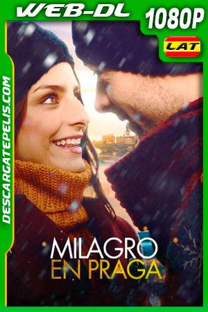 Milagro en Praga (2013) 1080p WEB-DL Latino