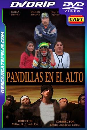 Pandillas en el Alto (2009) DVDRip Latino