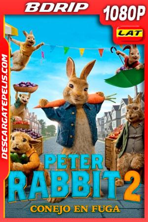 Peter Rabbit 2 Conejo en fuga (2021) 1080p BDRip Latino