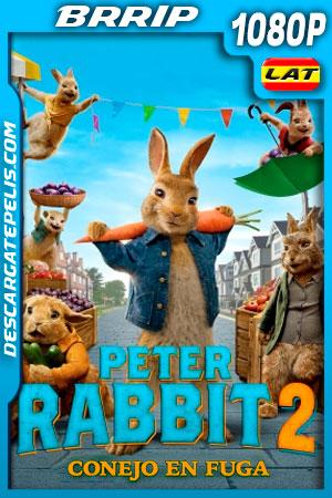 Peter Rabbit 2 Conejo en fuga (2021) 1080p BRRip Latino