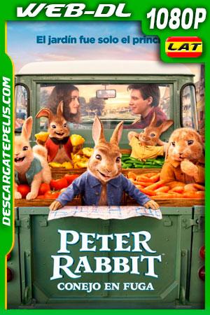 Peter Rabbit: Conejo en fuga (2021) 1080p WEB-DL Latino