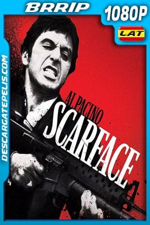 Scarface (1983) 1080p BRrip Latino – Ingles