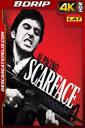 Scarface (1983) 4k BDrip HDR Latino – Ingles