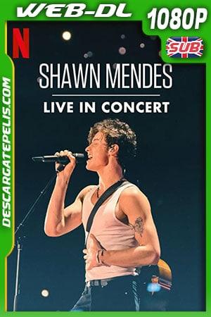 Shawn Mendes: Concierto en vivo (2020) 1080p WEB-DL
