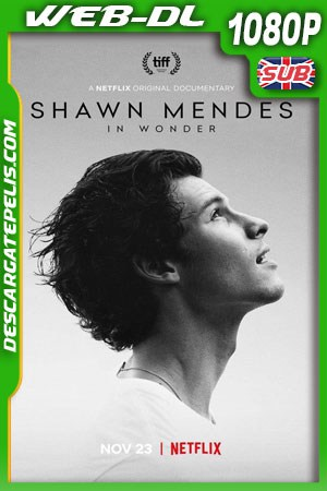Shawn Mendes: In Wonder (2020) 1080p WEB-DL
