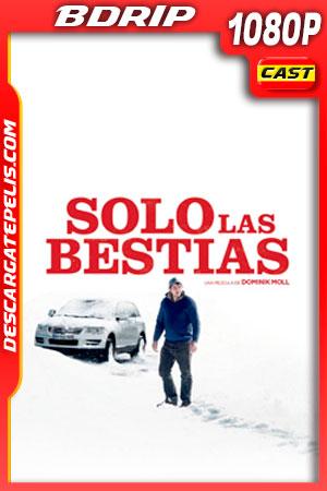 Solo las Bestias (2019) 1080p BDRip