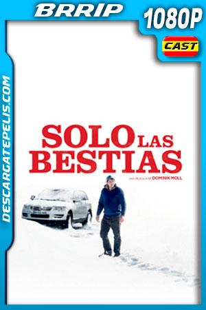 Solo las Bestias (2019) 1080p BRRip