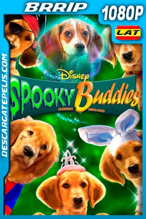 Spooky Buddies: Cachorros embrujados (2011) 1080p BRRip Latino