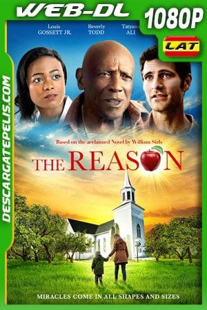 The Reason (2020) 1080p WEB-DL Latino