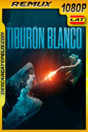 Tiburón blanco (2021) 1080p Remux Latino